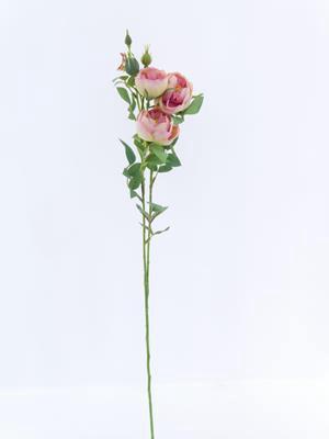 <h4>Af Rose Spray Vh Pink</h4>