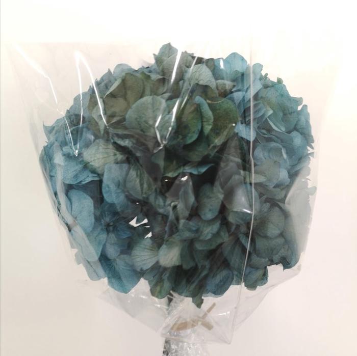 <h4>Hortensia verde preservada</h4>