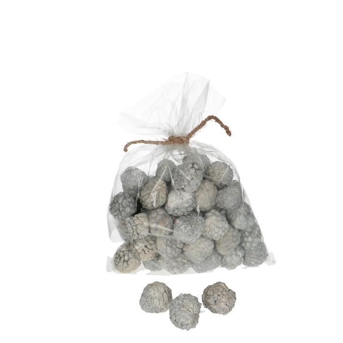 <h4>Dried articles Ata Fruit 1000g</h4>