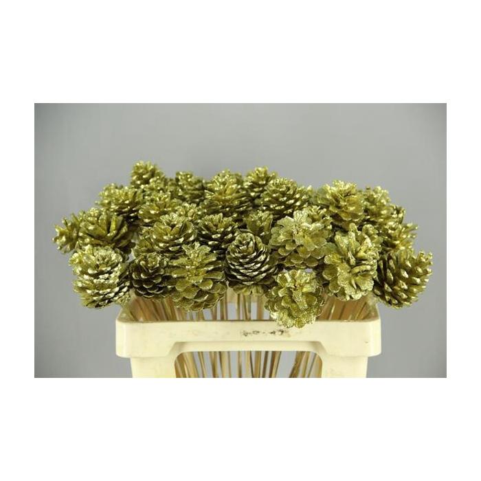<h4>Stick Pine Cone Gold+glitter</h4>