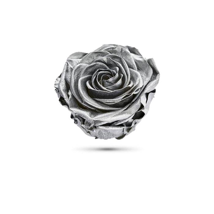 <h4>Rosa preservada cabeza plata metal</h4>