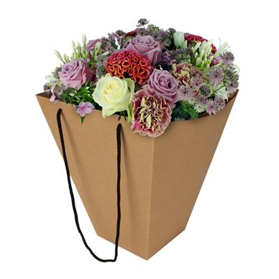 <h4>Bag basic carton 24/24x13/13xH30cm brown</h4>
