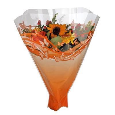 <h4>Housses 52x35x10cm OPP40 Primavera orange</h4>