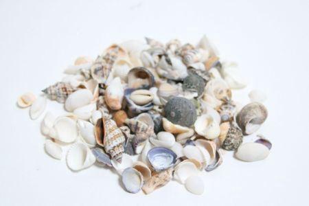 <h4>Basic Shell Mix 2kg</h4>