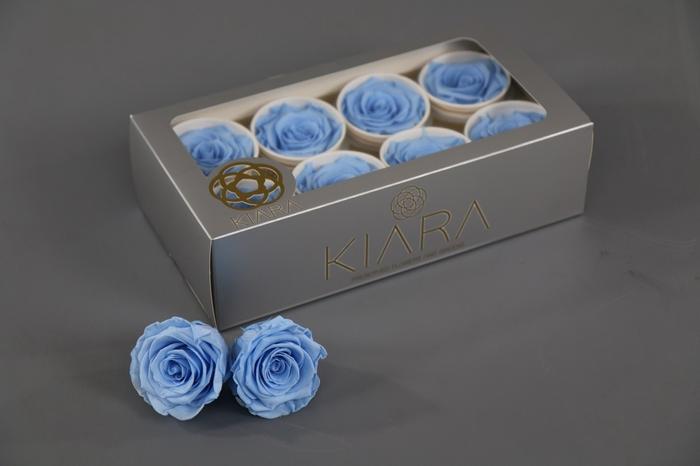 <h4>Rosa Preserved Baby Blue Rose</h4>