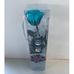Roos op steel mini turquoise plexi