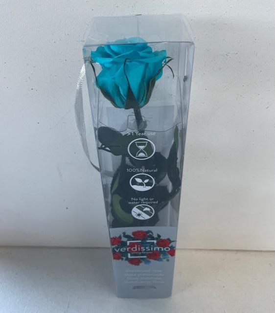 <h4>Roos op steel mini turquoise plexi</h4>