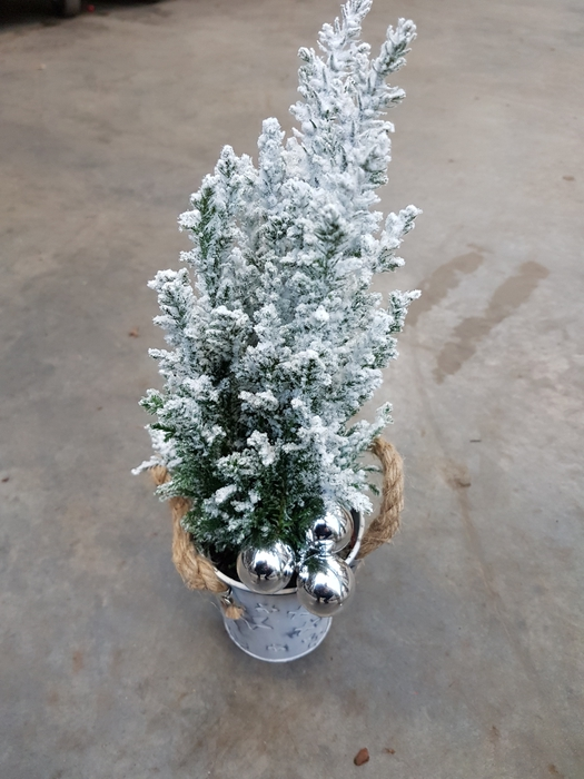 <h4>Kerstb Versierd Snow Krijzinken Bakje Deco</h4>