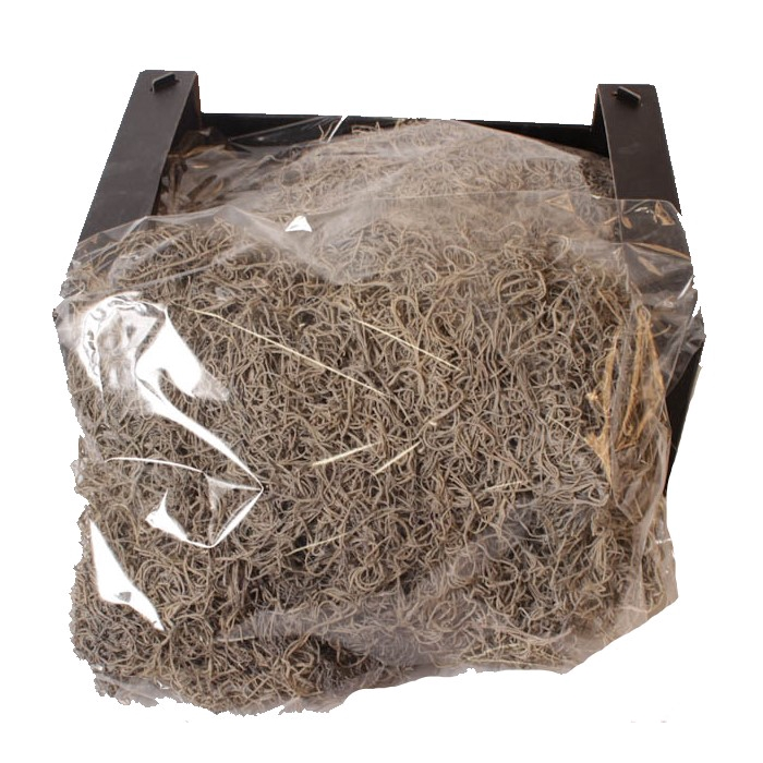 <h4>Tillandsia moss 250gr in poly frosted white</h4>