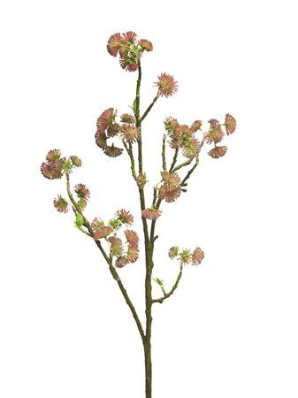 <h4>Blossom spray Queenie 96cm beauty</h4>