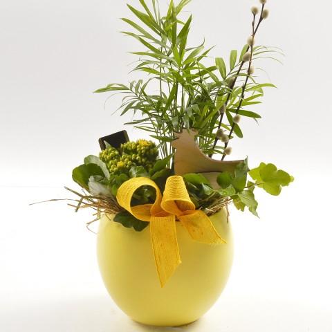 <h4>PTPB3906 Arrangementen planten in schaal</h4>