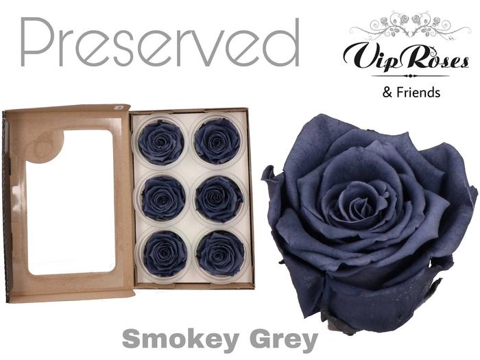<h4>R PRESERVED SMOKEY GREY</h4>