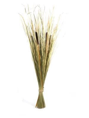 <h4>Df Bouquet Beargrass&hogla Brn</h4>