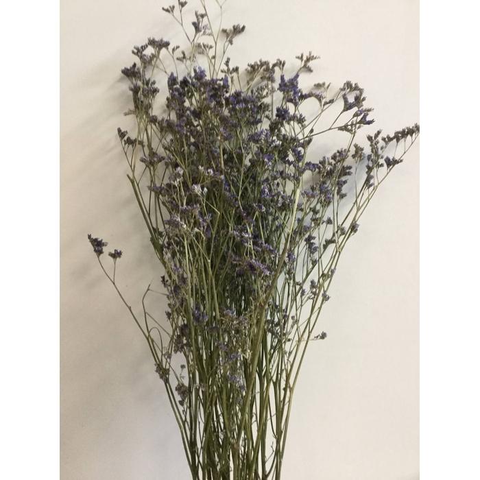 <h4>DRIED FLOWERS - LIMONIUM BLUE 5PCS</h4>