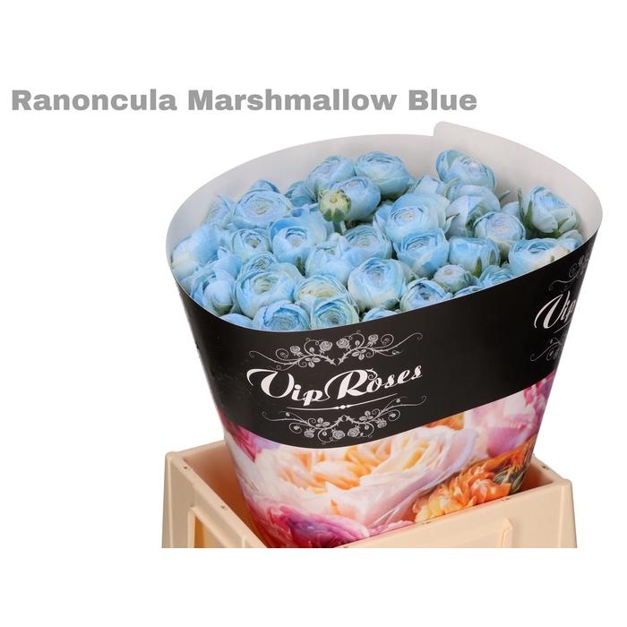 <h4>RAN OV MARSHMALLOW BLUE</h4>