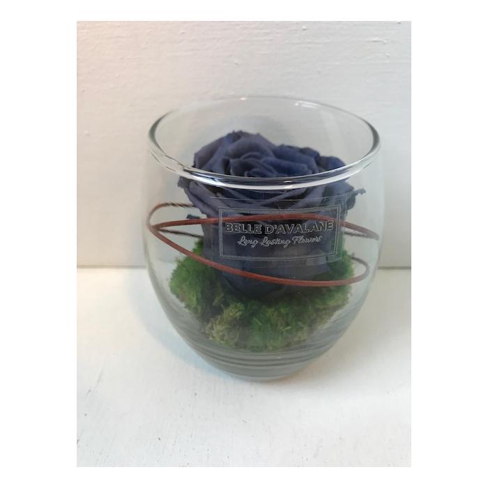 <h4>Glas d9x10cmh grijze roos</h4>