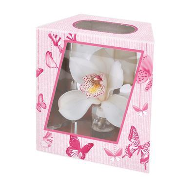 <h4>Boîte d'orchidee papillon 16/10x7,8xH17,5cm rose</h4>
