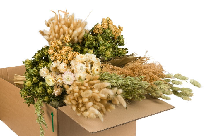 <h4>DRIED FLOWERS MIX IN BOX NATUREL</h4>