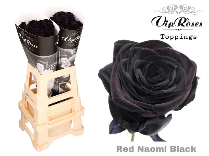 R GR RED NAOMI BLACK