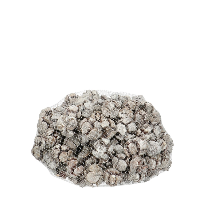 <h4>Dried articles Cypresse 1kg</h4>