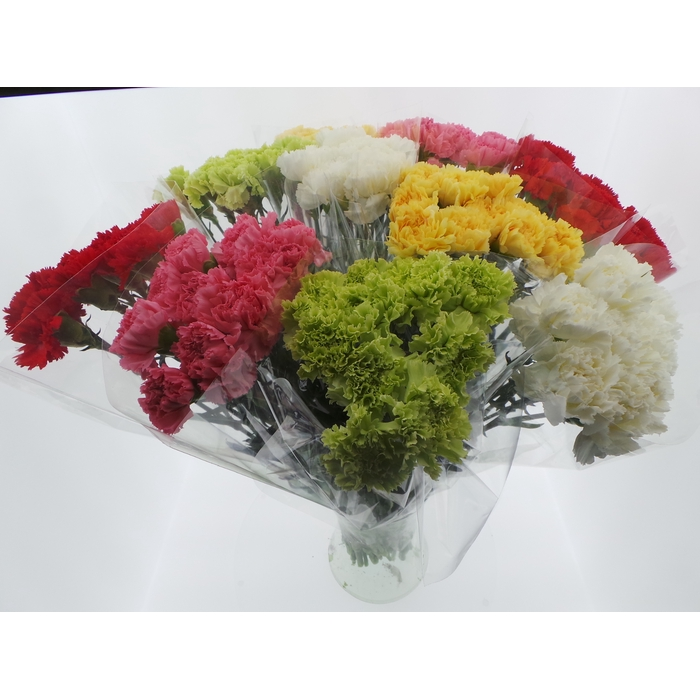 <h4>Bouquet Mono Anjers x10 mix 60cm</h4>