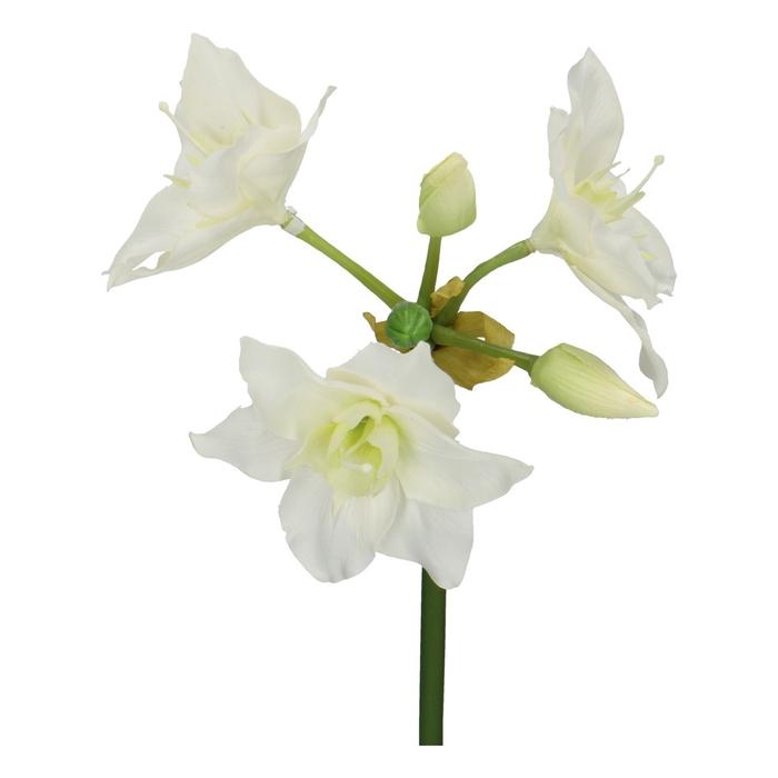 <h4>Silk Eucharis 60cm</h4>
