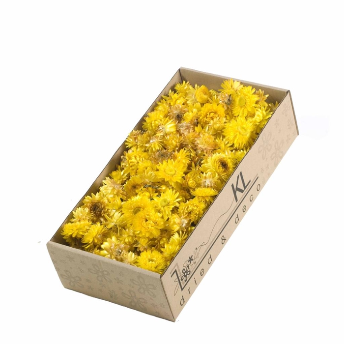 <h4>DRIED FLOWERS - HELICHRYSUM HEADS 100GR NATURAL YELLOW</h4>