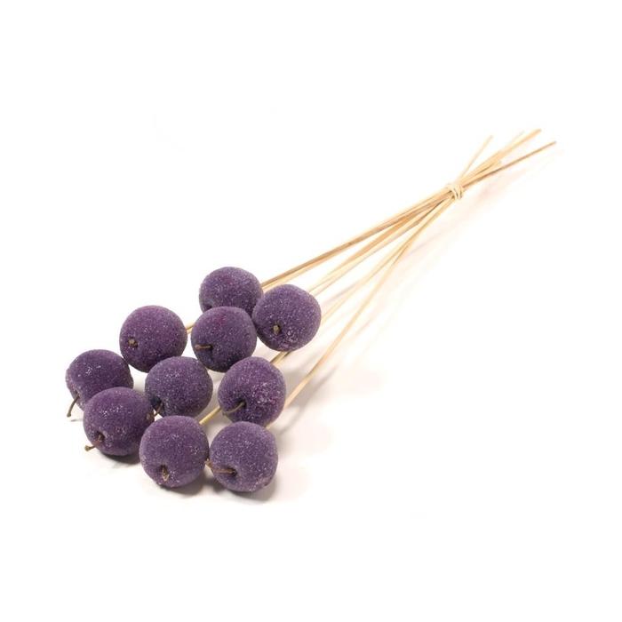 <h4>Apple sug 5cm o/s purple</h4>