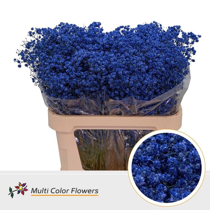 <h4>Gyps Grof Blauw donker</h4>