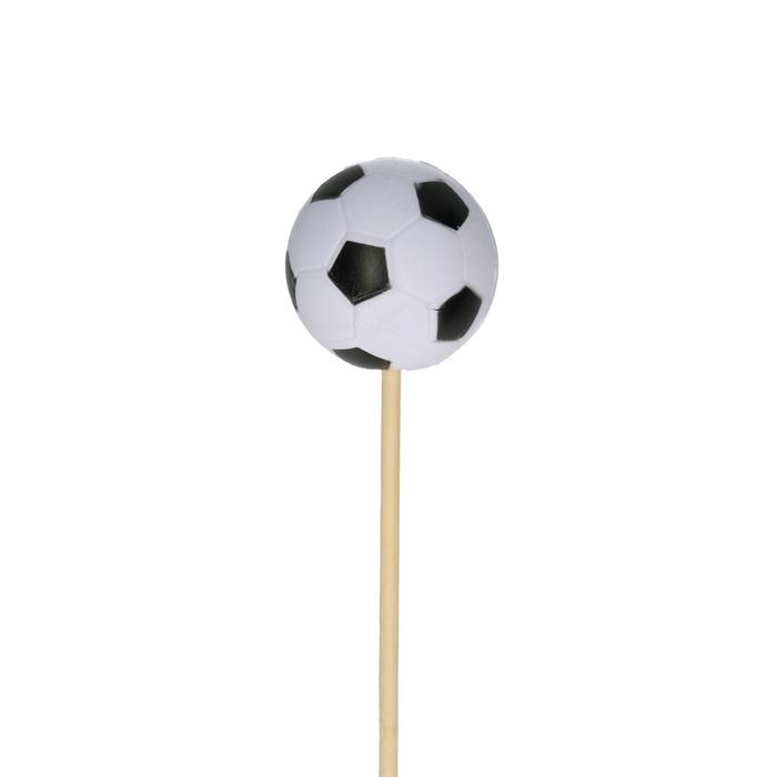 <h4>Bijsteker 50cm Voetbal 6cm</h4>