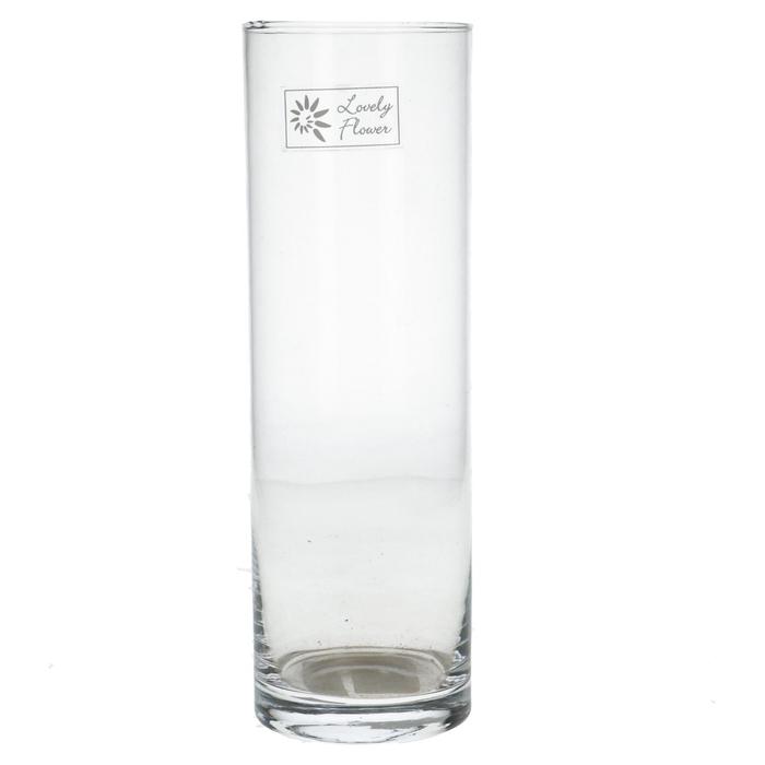 <h4>Glas Cilinder d08.5*26cm</h4>