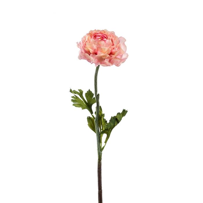 <h4>Silk Ranunculus 50cm</h4>
