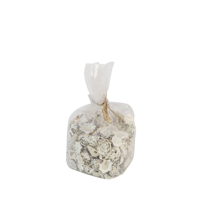 <h4>Shell Star Limpit 500g</h4>