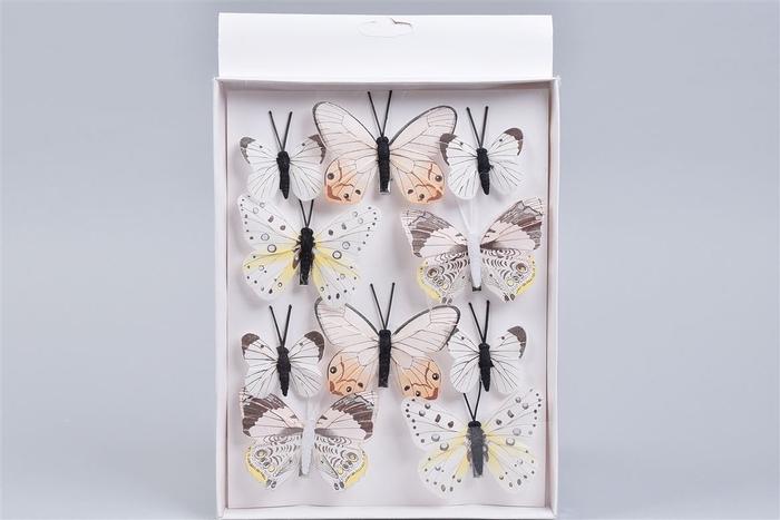 <h4>Bijsteker Vlinder Op Clip Kleur Mix P/10 5-8cm</h4>