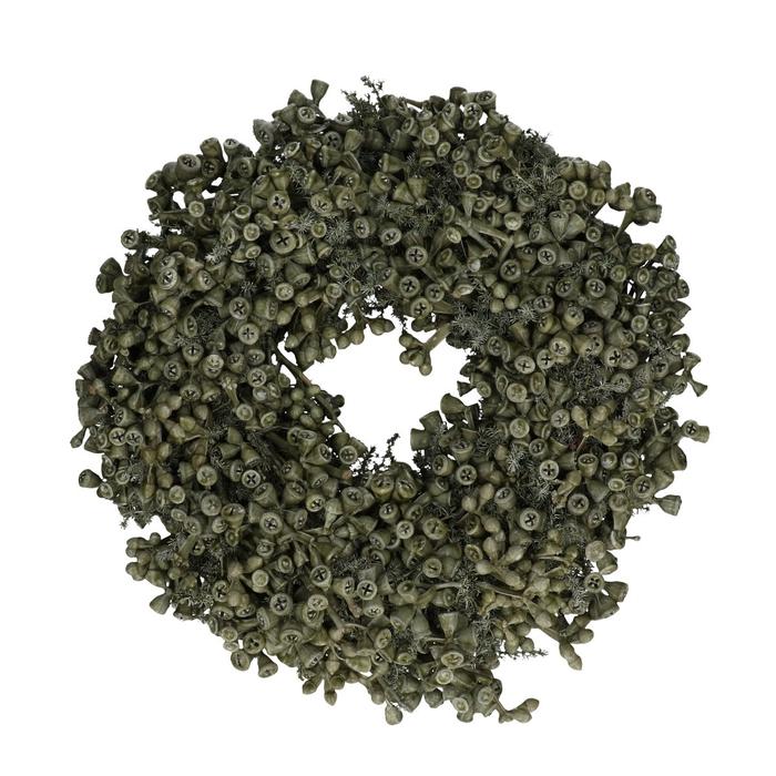 <h4>Wreath d35cm Eucalyptus wax</h4>