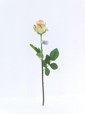 <h4>Af Oxford Rose Bud Pink Blush</h4>