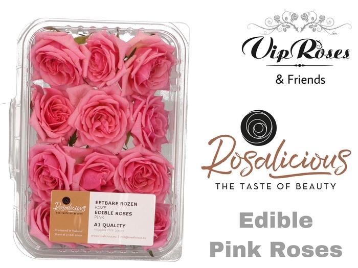 R EDIBLE ROSALICIOUS PINK