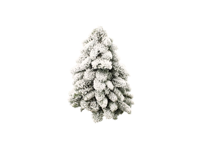 <h4>Kerstboom Nobilis Snow 30</h4>