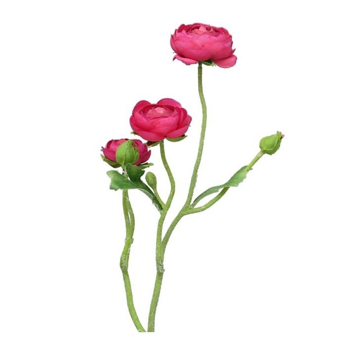 <h4>SILK FLOWERS - RANONCULUS AZURA FUCHSIA 48CM</h4>