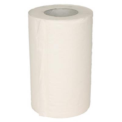 <h4>Cleaning paper mini 21cmx120mtr</h4>
