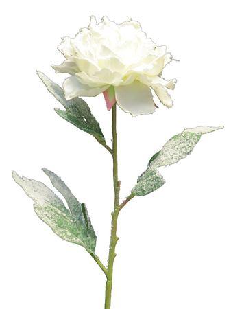 <h4>Flower Peony3 h78 cream/green</h4>