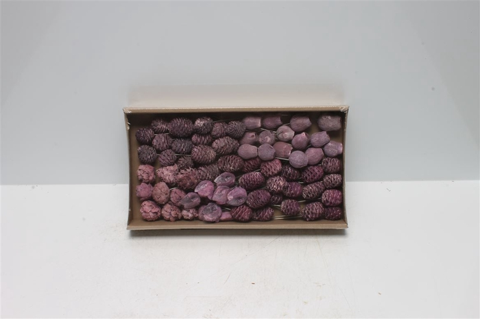<h4>Lcd Assortment Frosted Brombeer On 10cm Wire (70 S</h4>