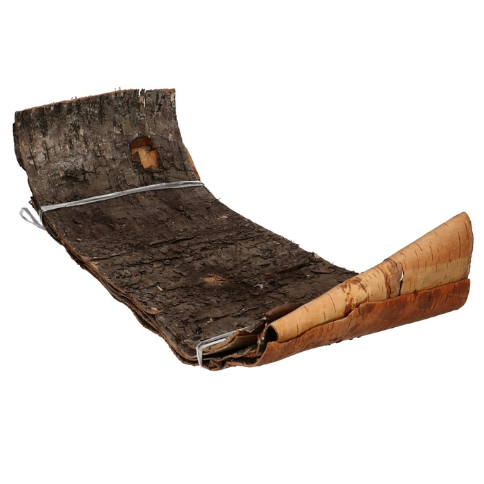 <h4>Dried articles Bark birch 70*24cm x5</h4>