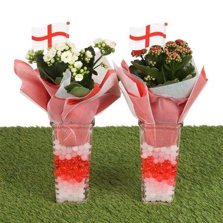 <h4>Football Indoor Special: Square Glass En Ø09cm Wit</h4>