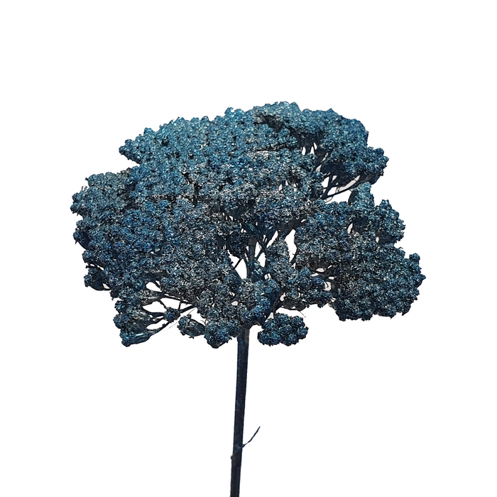 <h4>Achillea Metalic antique blue</h4>