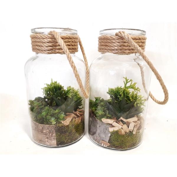 <h4>714 RP Fles / Terrarium 14/26 mini Succulentmix</h4>