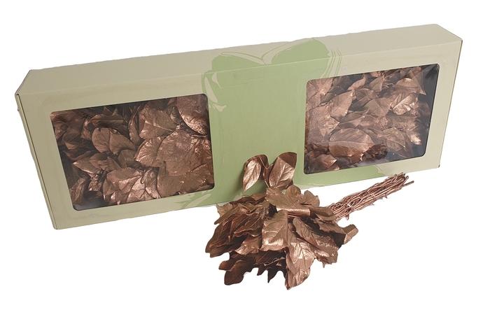 <h4>Salal tips preserved per bunch Copper</h4>
