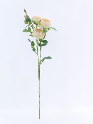 <h4>Af Rose Spray Vh Peach</h4>
