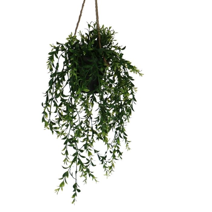 <h4>Silk Hangpot Boxwood 50cm</h4>