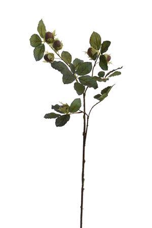 <h4>Flower Hazelnut h54 green/brown</h4>